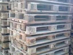 Закупаем Поддоны пластиковые и деревянные Новые и б/у