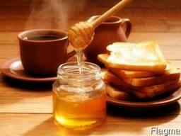 Закупаю оптом мёд с акации,разнотравья,а также рапсовый