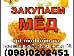 Закупка меда оптом. Кировоградская область