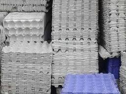 Закупка яичных лотков, шпуль картонных, туалетной бумаги.