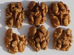 Закуповуємо янтарний горіх всих видів