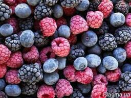 Заморожені плоди та ягоди