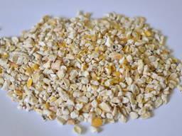 Зародок кукурудзяний