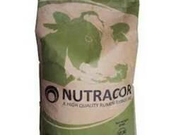 Защищённый жир для коров Нутракор 88