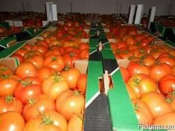 Затаможивание овощей и фруктов - экспорт