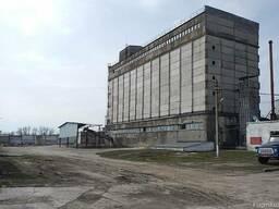 Завод натуральных продуктов. Березовка