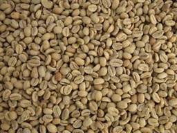 Зелёный кофе Djimmah gr.5