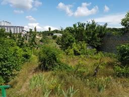 Земельный участок 6,5 сот в СНТ Алёнушка