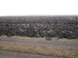 Земельный участок сельхоз (9.75Га) Николаевская область.