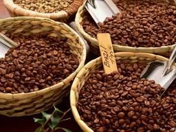 Зерновой кофе арабика и робуста