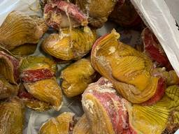 Желудок куриный, неочищенный, доставка