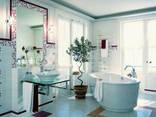 Женская Ванная Двери/Сантехника - фото 1