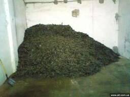 Жмых подсолнечный - фото 1