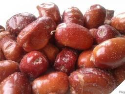 Зизифус санжет ягода с ирана.
